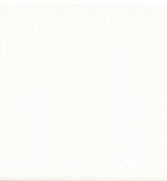 Vloertegel Uni Wit