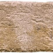 Wandtegel Colosseum Stone Earth